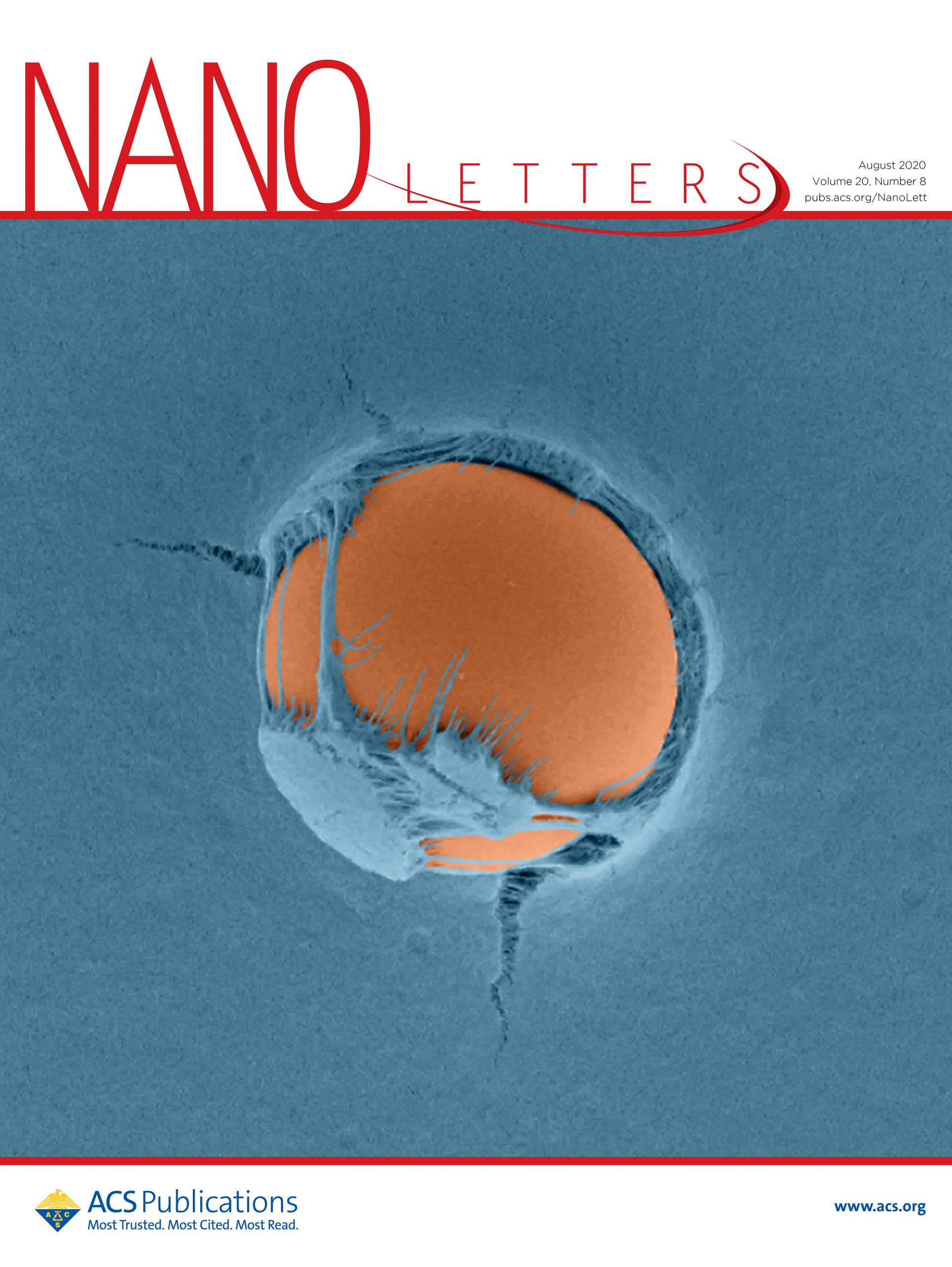 NanoLettersCover